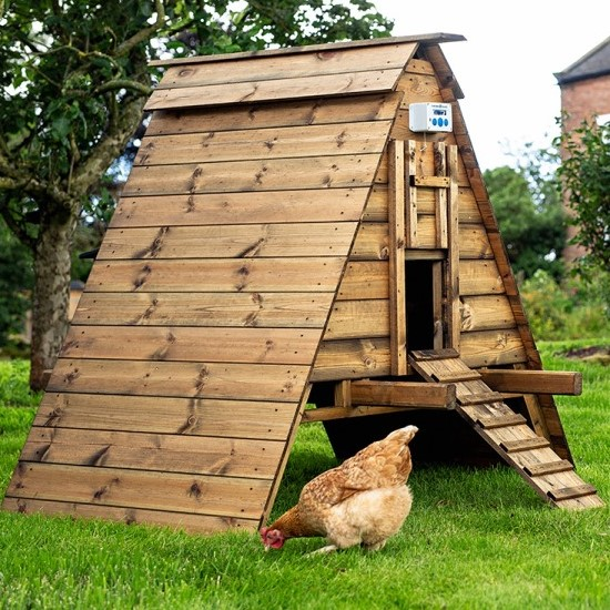 The Dingle Chicken Coop