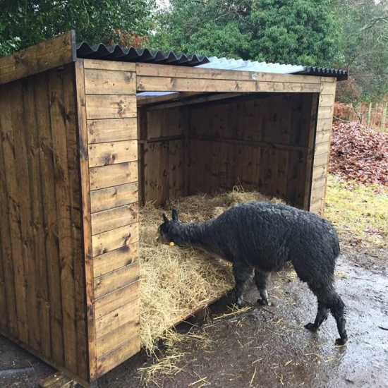 10' x 6' Sheep Shelter
