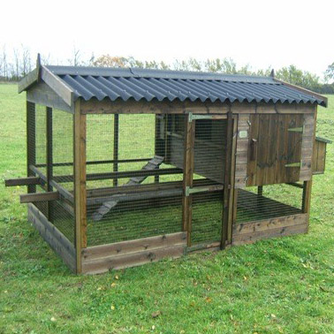 The Thicket Chicken House